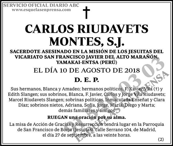 Carlos Riudavets Montes